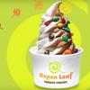 $5 for Self-Serve Frozen Yogurt at Aspen Leaf Yogurt
