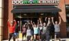 Dogwood Crossfit - Huntersville: Four Weeks of Unlimited CrossFit Classes at Dogwood CrossFit (70% Off)
