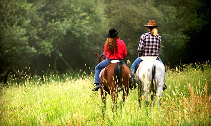 Horseplay Stables - Middleboro: Two or Four 60-Minute Horseback-Riding Lessons at Horseplay Stables in Middleboro (Up to 67% Off)