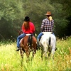 Up to 67% Off Horse-Riding Lessons in Middleboro