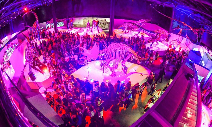 Houston Museum of Natural Science - The Museum District: $30 for Spirits & Skeletons Mixer on October 31 at Houston Museum of Natural Science ($50 Value)