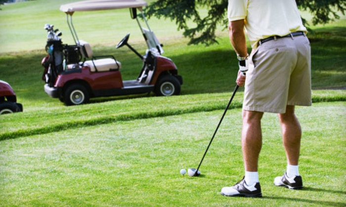 Saddle Creek Golf Club - 3: 18-Hole Golf Outing for Two or Four with Cart Rental and Lunch at Saddle Creek Golf Club in Lewisburg (Up to 54% Off)