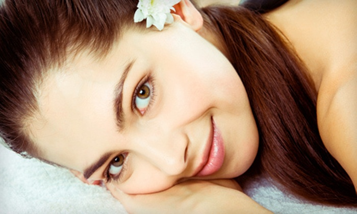 THE SKIN SPA at Robert Jeffrey Salon - DePaul: Four or Six Microdermabrasion Treatments at The Skin Spa at Robert Jeffrey Salon (Up to 80% Off)