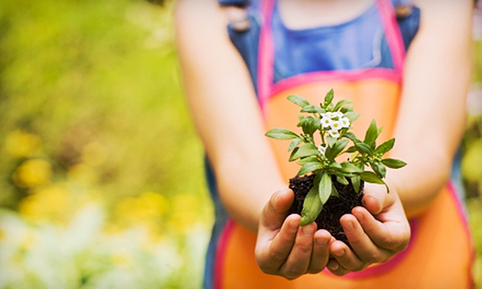 New Earth Garden Center - East Louisville: $15 for $30 Worth of Heirloom Seeds, Organic Fertilizer, Garden Supplies, and More at New Earth Garden Center