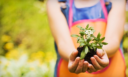 $30 Groupon to New Earth Garden Center - New Earth Garden Center in Louisville