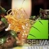 Half Off at Selva Grill