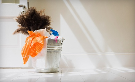 One 3-Hour Cleaning Session (a $150 value) - Sparkling Klean Services in
