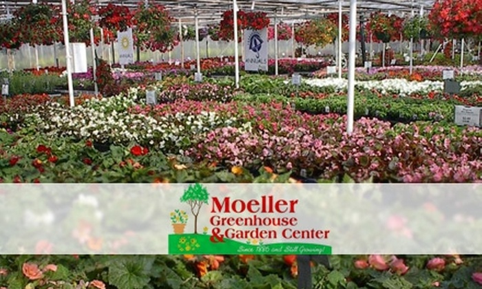 Moeller Greenhouse & Garden Center - White Oak: $15 for $30 Worth of Annuals, Perennials, Trees, Shrubs, and More at Moeller Greenhouse & Garden Center