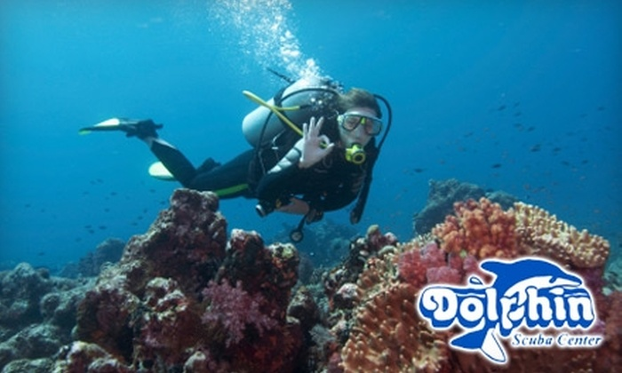 Dolphin Scuba Center - Multiple Locations: $39 for Introduction to Scuba-Diving Class at Dolphin Scuba Center