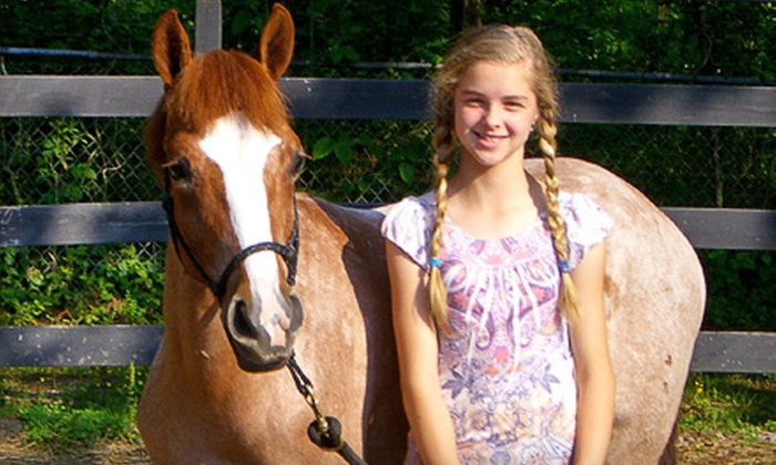 Caylor Stables - Chattanooga: $22 for a One-Hour Private Horseback-Riding Lesson at Caylor Stables ($45 Value)