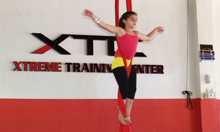 Three, Five, or Seven Aerial Silk Classes at Xtreme Training Center (XTC Gym) (Up to 68% Off)