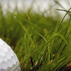 Up to 51% Off Golf Tournament in Sherman