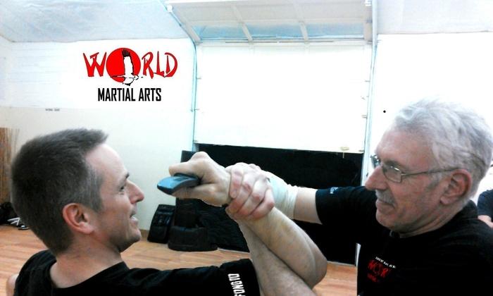 World Martial Arts LLC - Olympia: Up to 75% Off Jeet Kune Do & Krav Maga at World Martial Arts LLC