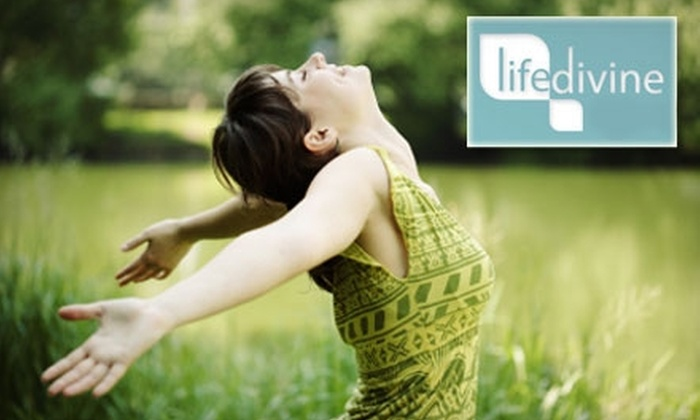 A Life Divine - Indianapolis: $35 for Two Hours of Concierge Service from A Life Divine
