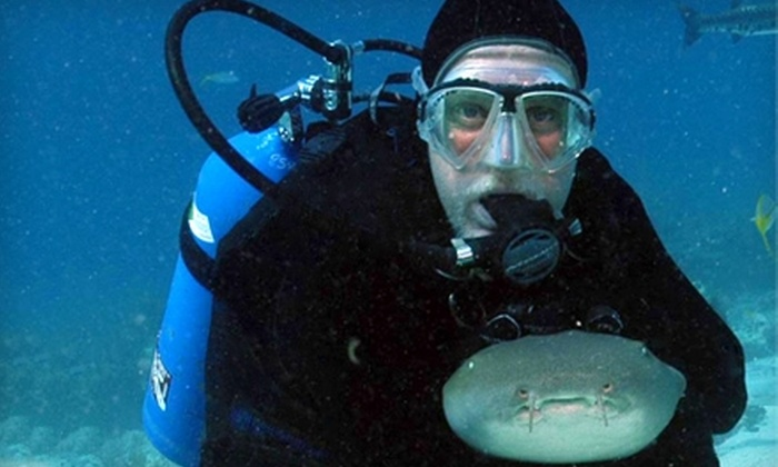 Deep Six Divers Service, Inc. - Lakeland: $25 for a Two-Hour Intro to Scuba Diving Class at Deep Six Divers Service, Inc.