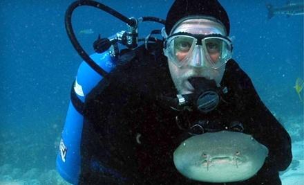 Deep Six Divers Service, Inc. - Deep Six Divers Service, Inc. in Lakeland