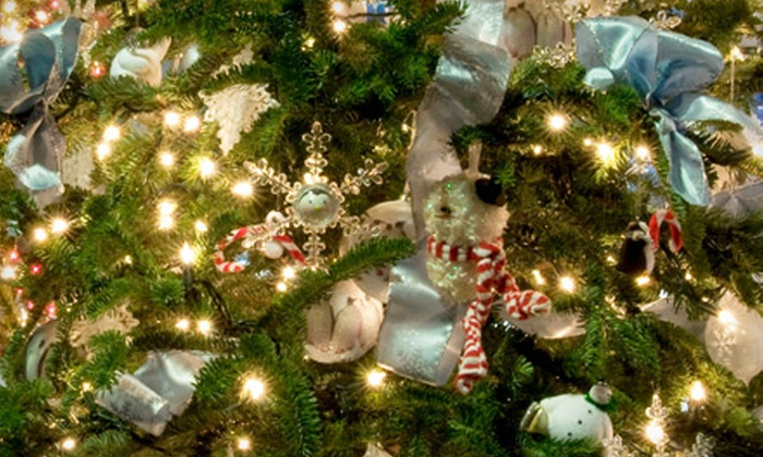 Goodwill Industries' Festival of Trees - Downtown Wichita: Holiday-Festival Entry for Two or Benefit Auction for One from Goodwill Industries' Festival of Trees (Up to 53% Off)