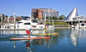 Dolan's Board Sports: Two- or Three-Hour Stand-Up Paddleboard Rental for One or Two at Dolan's Board Sports (Up to 51% Off)
