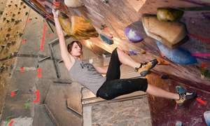 Climbnasium: Indoor Boulder Climbing at Climbnasium (Up to 60% Off). Three Options Available.