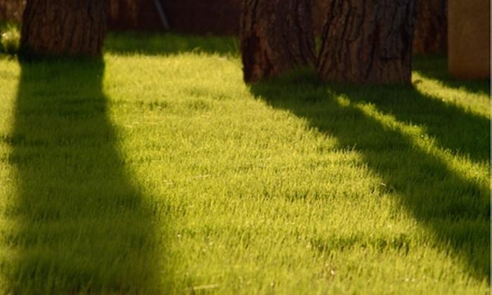 Cut Away Lawn Maintenance - Ottawa: $69 for Two Lawn Fertilizer Treatments from Cut Away Lawn Maintenance ($169.99 Value)