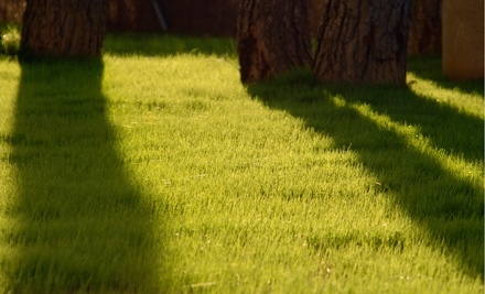 Cut Away Lawn Maintenance - Cut Away Lawn Maintenance in