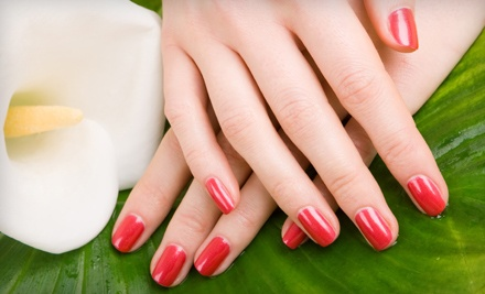 Shellac Manicure (a $30 value) - Pro Nails & Spa in Omaha