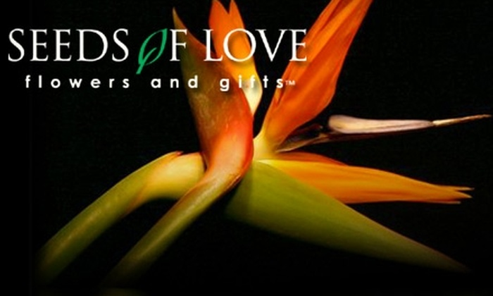 Seeds of Love Flowers and Gifts - Northeast San Antonio: $25 for $50 Worth of Floral Arrangements or Plants at Seeds of Love Flowers and Gifts