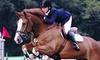 58% Off Horseback-Riding Lessons in Nobleton