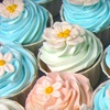 Half Off Cupcakes at The Sweet Spot Cupcakery in Converse