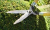 New Caztle Landscaping: Two or Four Hours of Lawn-Care Services from New Caztle Landscaping