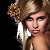 Up to 56% Off Hair-Oil Service or Cut & Highlights