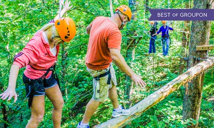 Two-Hour Climb, Zip, Swing Treetop Trek at Adventureworks (Up to 59% Off). Four Options Available.