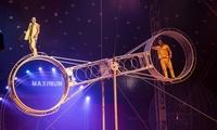 1 ou 4 places en gradin de face pour le spectacle du Cirque Maximum dès 10 €