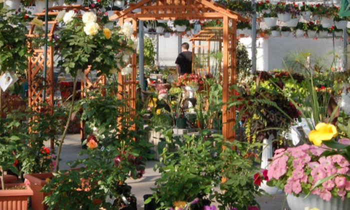 Floral Acres - Southwest Saskatoon : $10 for $20 Worth of Flowers, Shrubs, and Trees at Floral Acres