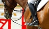 Deer Creek Stables - Burleson: One Private and One Group Horseback-Riding Lesson at Deer Creek Stables (58% Off)