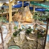 Up to 54% Off at Edgewater Resort and Waterpark in Duluth, MN