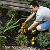 Half Off at Tall Pines Greenhouses in North Augusta