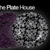 53% Off Dinnerware from The Plate House