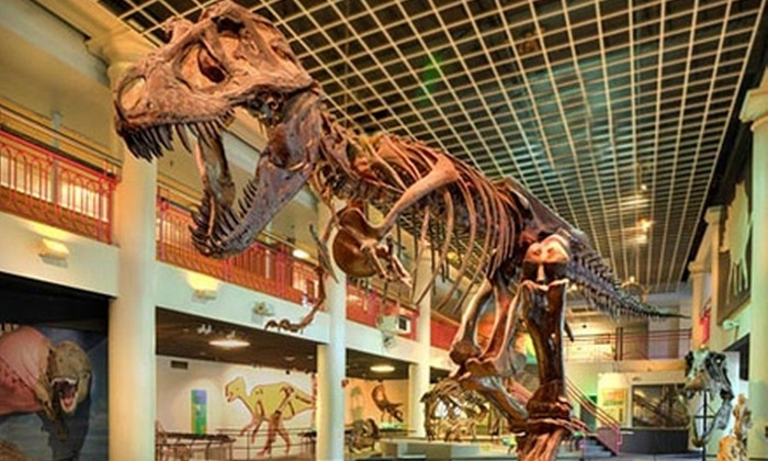 Academy of Natural Sciences - Logan Square: $6 for One General-Admission Ticket to the Academy of Natural Sciences in Philadelphia (Up to $12 Value)