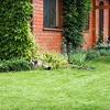 56% Off Lawn Mowing from Urban Lawn and Garden