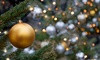 Wilson Family Christmas Trees - Carlsbad: $25 for $50 Toward Christmas Trees at Wilson Family Christmas Trees (50% Off)