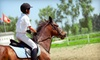 Iron Gate Farm - Digbey: Two or Five Horseback-Riding Lessons or Party for Up to 10 at Iron Gate Farm in Brooks (Up to 52% Off)