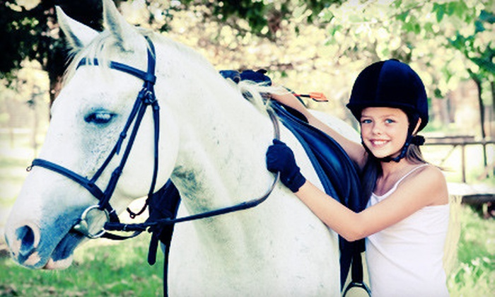 Summer Wind Stables - Chester: One, Three, or Five Riding Lessons or $10 for $20 Worth of Gift-Store Items at Summer Wind Stables in Chesterland