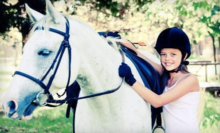 Horseback-Riding Lesson Package (a $72 value) - Summer Wind Stables in Chesterland