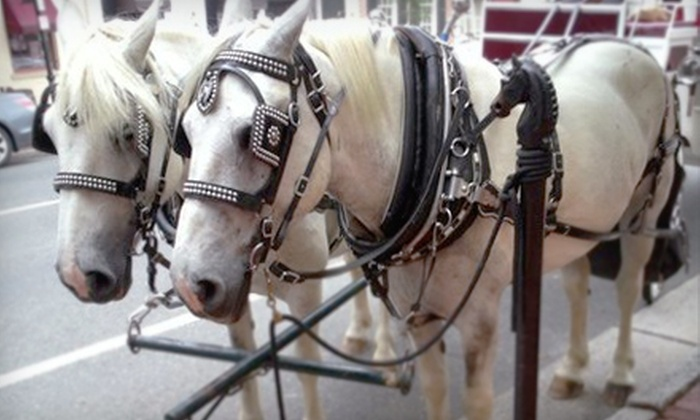 Marriage, Carriage and More, LLC - Downtown Fredericksburg: 30- or 60-Minute Private Carriage Ride for Two Through Historic Fredericksburg from Marriage, Carriage and More, LLC