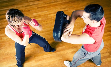 10 Kickboxing or Mixed-Martial-Arts Classes Plus a Complimentary T-Shirt - Elite Defense Systems in Rockford