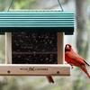 Half Off Birding Supplies