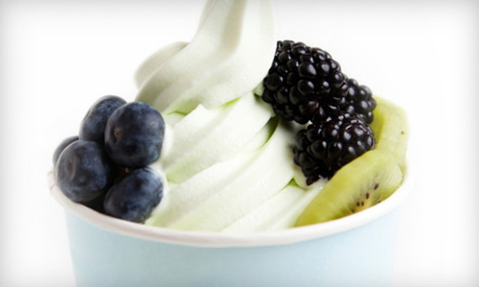 Lemon Tree Yogurt Shoppe - Bryant: $5 for $10 Worth of Frozen Yogurt at Lemon Tree Yogurt Shoppe
