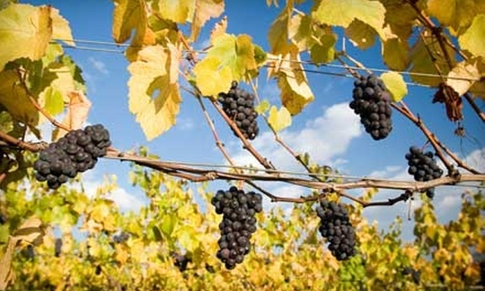 Trinity Vineyards - Salem: $8 for One Admission to the Wine Country Thanksgiving Celebration at Trinity Vineyards (Up to $18 Value)