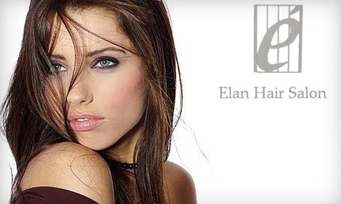 Elan Hair Salon - Rosedale: $40 for a Precision Haircut, Deep Conditioning Treatment, Blow-Dry, and Style at Elan Hair Salon